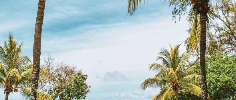 Femme regardant le ciel à l'horizon sur le bord de l'océan