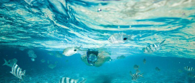 Club Med Kani, aux Maldives - Un homme se baigne dans l'Océan avec un masque de plongée.