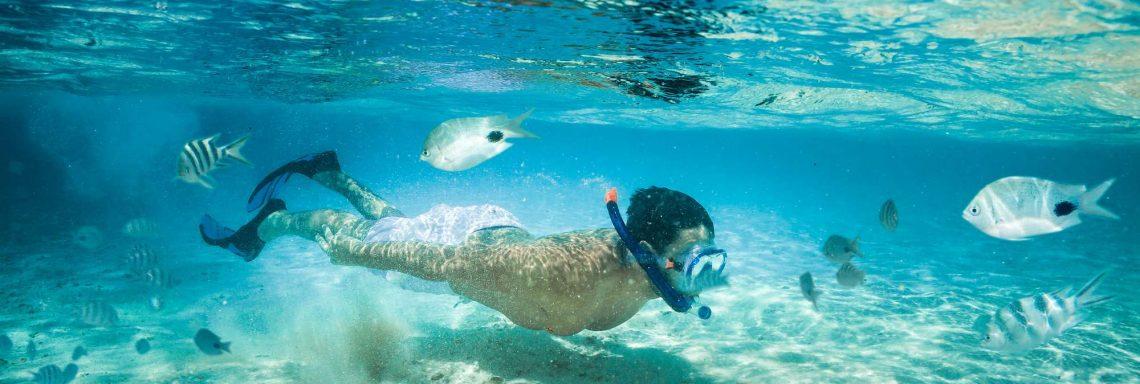 Club Med Kemer, en Turquie - Un homme fait de la plongée en apnée entourer de poissons