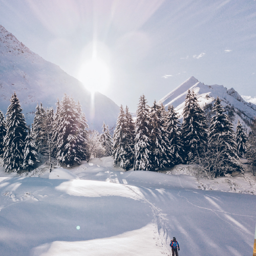 Ski dans les Alpes,